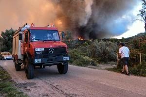 У Греції гасять велику лісову пожежу