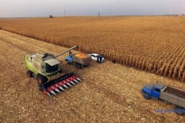 Ukrainian farmers already harvest six mln tonnes of grain – Agrarian Policy Ministry