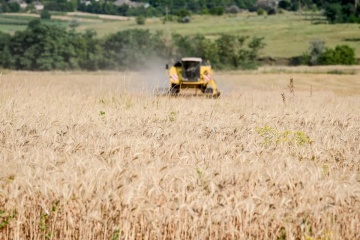 Ukraine exports agricultural products worth about $800 mln to China this year