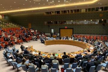 Rada Bezpieczeństwa ONZ uchwaliła globalne zawieszenie broni podczas pandemii