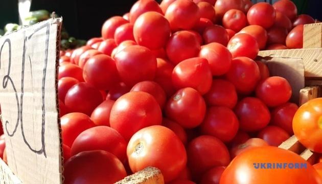 На Запоріжжі помідори