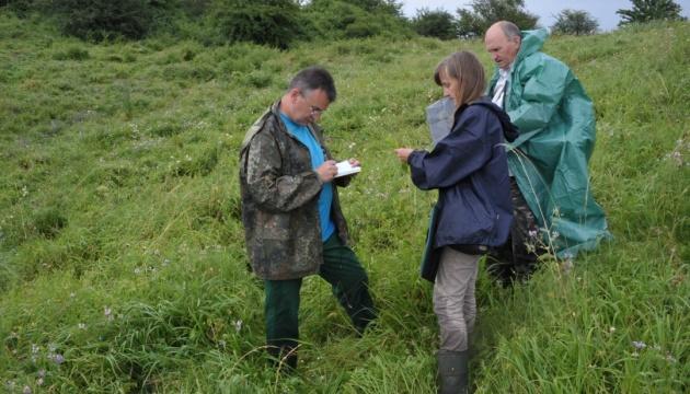 Науковці занепокоєні суттєвими змінами рослинності в заповіднику «Касова Гора»