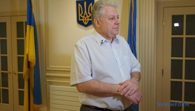 Yelchenko sees no need to call UN Security Council meeting over UIA plane crash