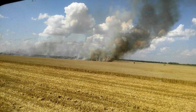 В Житомирской области из-за неисправного комбайна сгорели 3,5 гектара пшеницы