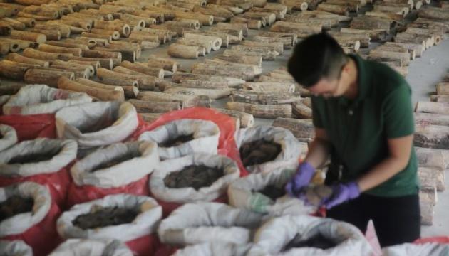 У Сингапурі конфіскували рекордну партію в 9 тонн слонових бивнів