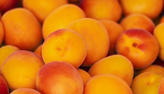 На ринку подешевшав український абрикос - експерти