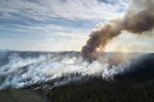 У Росії знову горить Сибір: вогнем охоплено вже 3 мільйони гектар території