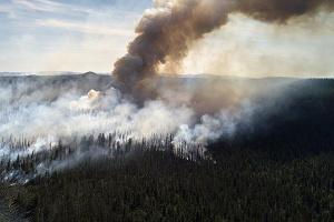 В Україні зберігається високий рівень пожежної небезпеки