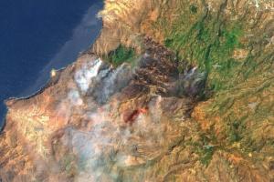 Масштабный лесной пожар на Канарах сняли из космоса