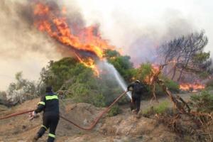 Через пожежу на грецькому острові евакуювали селище