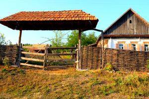 На Донеччині влаштують профорієнтаційний етнофестиваль зеленого туризму
