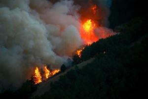 На заході Туреччини третій день гасять лісову пожежу
