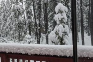 У Канаді пройшов рясний снігопад: випало півметра снігу