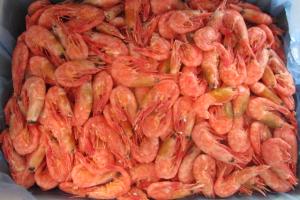 Массовое отравление креветками: бердянская прокуратура открыла дело