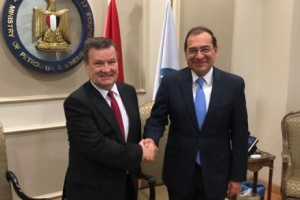 Ukraine, Egypt discuss extension of energy cooperation