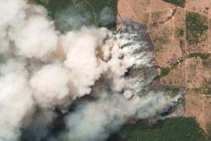 ЄС готовий надати фінансову допомогу для гасіння пожеж в Амазонії