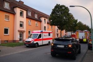 В немецком городе ищут кобру-беглянку, эвакуировали людей из четырех домов