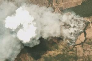 G7 готовит соглашение о помощи в борьбе с пожарами в лесах Амазонии
