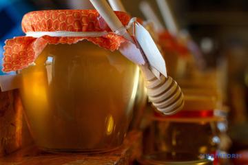 Ucrania ha aumentado un 20% las exportaciones de miel