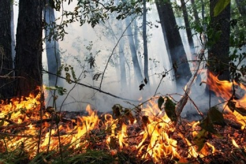 Extreme fire hazard level expected in most Ukrainian regions