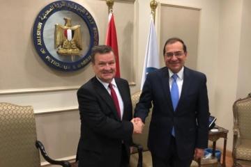 Украина и Египет обсудили расширение сотрудничества в энергетике