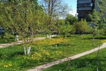 Киевлянам вернули участок, где должен быть сквер имени Шаповала