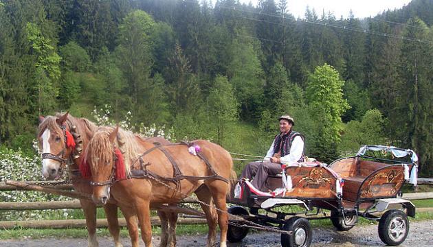 Прикарпатье зовет туристов на Праздник гуцульской фиры и коня