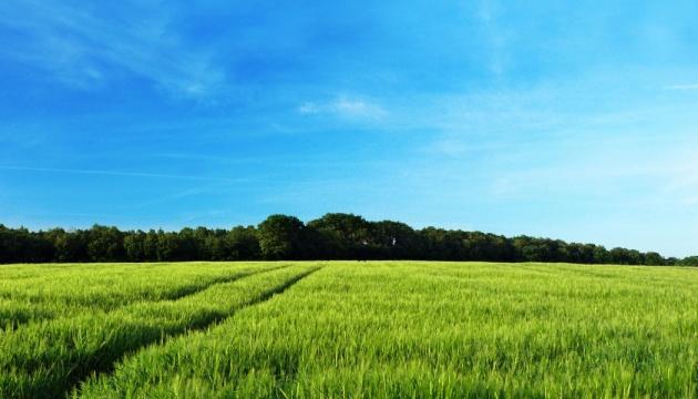 Уряд передав 1,61 мільйона гектарів поза межами населених пунктів для 762 ОТГ