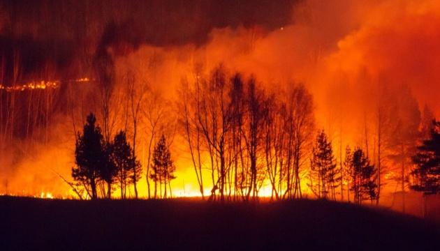 Сибирь продолжает гореть: 500 очагов возгораний, площадь пожара увеличивается