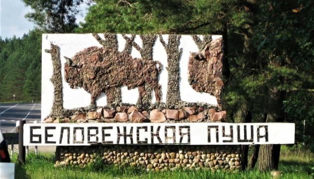 В Беловежской пуще появится второй археологический музей