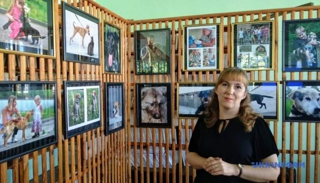 В Чернигове организовали выставку изображений бездомных животных
