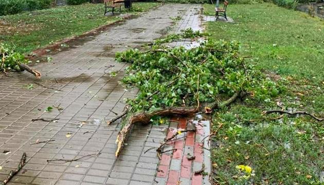 Негода в Києві повалила 90 дерев