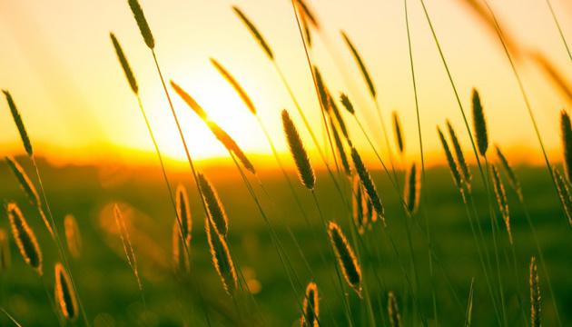 12 серпня: народний календар і астровісник