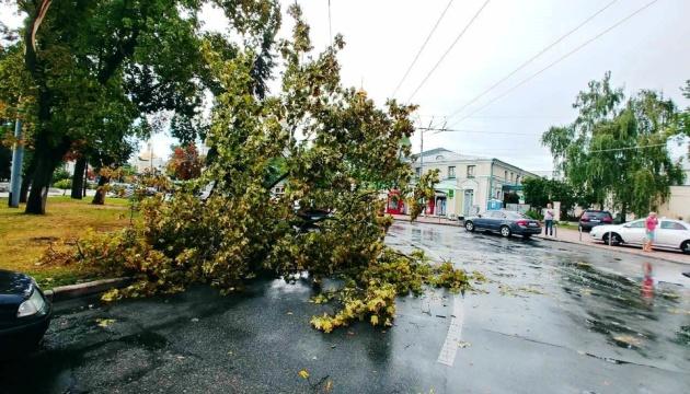 В Киеве ураган повалил 120 деревьев