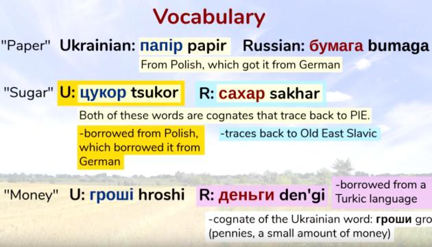 Популярный англоязычный видеоблогер объяснил разницу между украинским и русским языками
