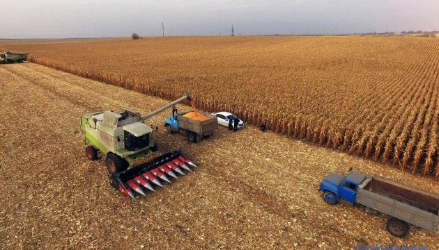 Ukrainian farmers harvest grain and leguminous crops from 98% of area