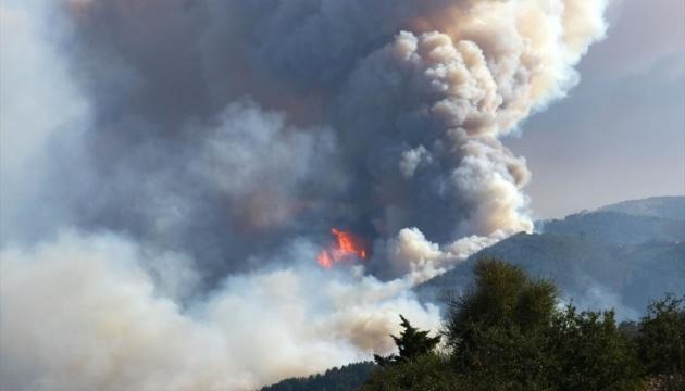 Захід та південь Туреччини охопили лісові пожежі