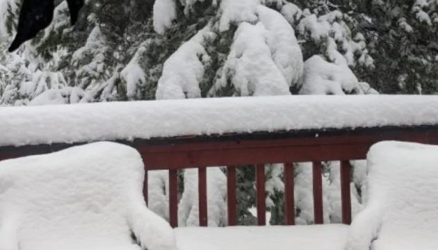 В Японії через снігопади загинули вісім людей