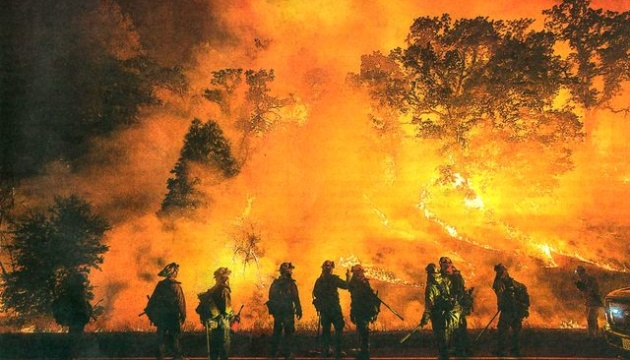 В Амазонскому лесу — рекордное количество пожаров