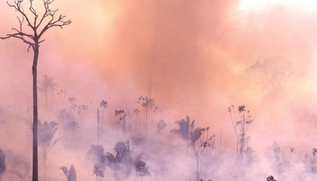 Пожежі в Амазонії: Перу й Колумбія скликають лідерів країн на зустріч