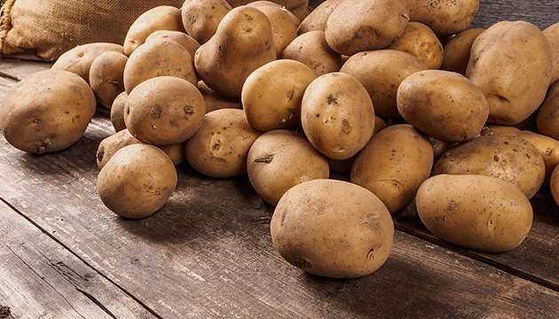 """Результат пошуку зображень за запитом картопля"""""""