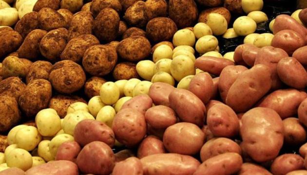 Українська картопля є найдорожчою в регіоні — експерт