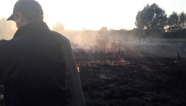 На Київщині горять торфовища в п'яти районах