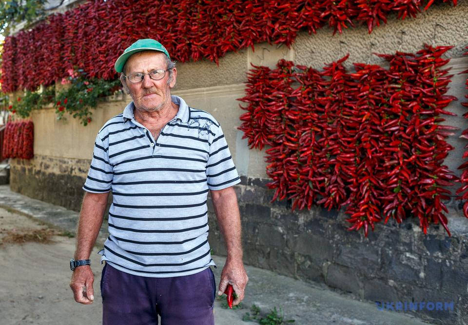 Лясло Молнар у себе на подвір'ї. Щороку він виготовляє близько 200 кілограмів паприки
