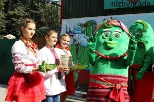 Огуречный фестиваль в Нежине будет выбирать лучший дизайн банок и бочек для соления