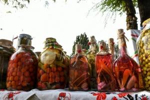 В Запорожье проходит юбилейный фестиваль консервации