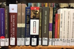 Бібліотека в Нью-Йорку отримала понад 70 книг українською мовою