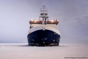 Майже 600 науковців із 17 країн: найбільша в історії експедиція вирушила до Арктики