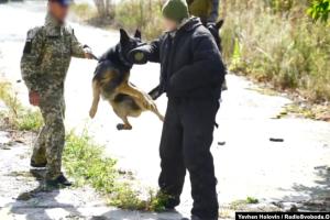 Як тренують Сили спецоперацій України
