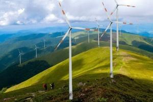 Активісти вимагали заборонити будівництво вітряків на Боржаві — суд відмовив
